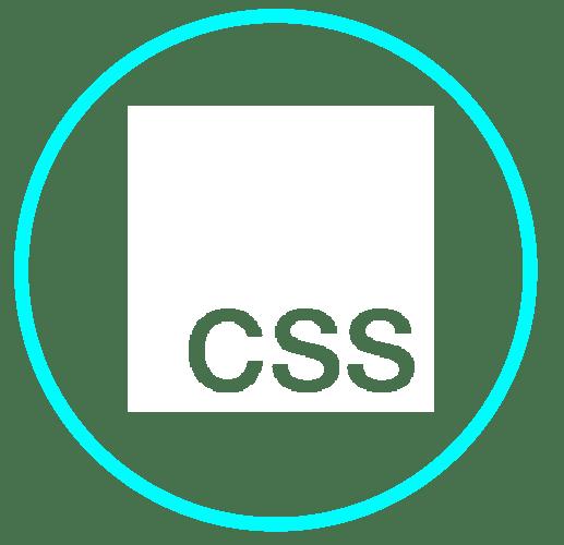 CSS_Mesa de trabajo 1
